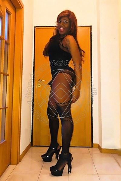 Rosa FIRENZE 3480450597